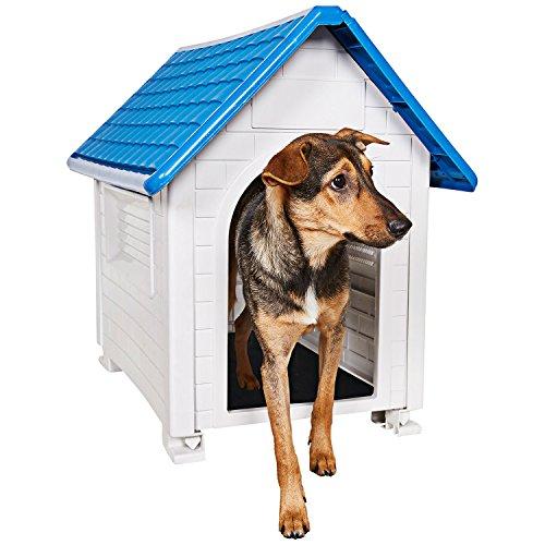 Animals Favorite Dog House