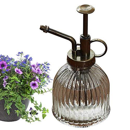 Cyleibe Pulverizador para plantas, botella de cristal, flor de agua,...