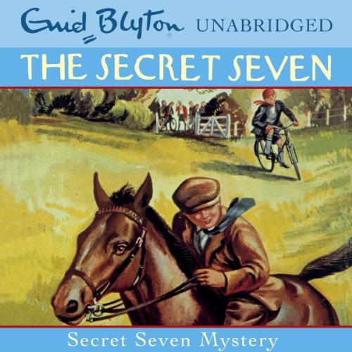 Secret Seven: 9 cover art