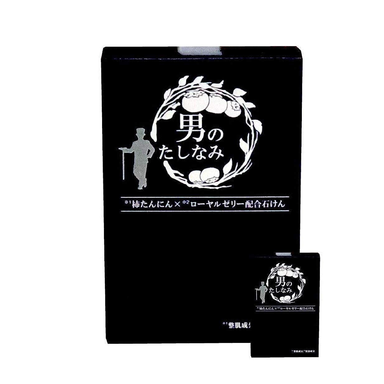 段落木非アクティブ柿渋石鹸 男のたしなみ 100g (2個セット)