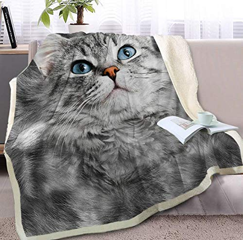 DJSK Four Seasons Grey Cat Throw Blanket on the Bed 3D Animal Sherpa Blanket Pet Throw Siamese Fur Printed Thin Duvet 150 cm x 200 cm