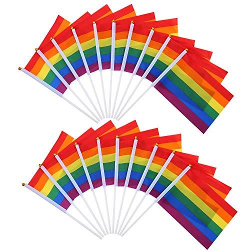 LANGING 20 Pack Regenboog Vlag Banner Gay Pride Regenboog Vlag Lesbische Vrede