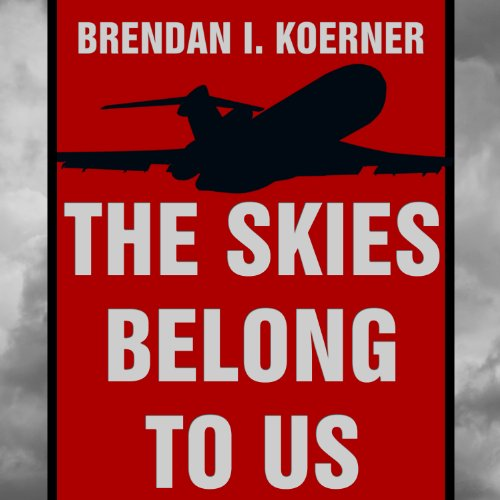 The Skies Belong to Us audiobook cover art
