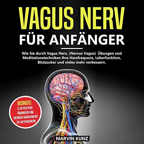 Vagus Nerv für Anfänger Titelbild