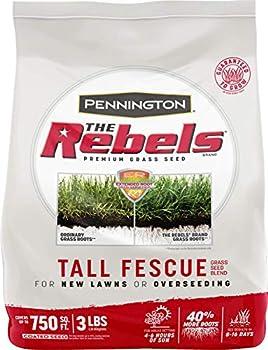 3lbs Pennington The Rebels Tall Fescue Grass Seed Blend