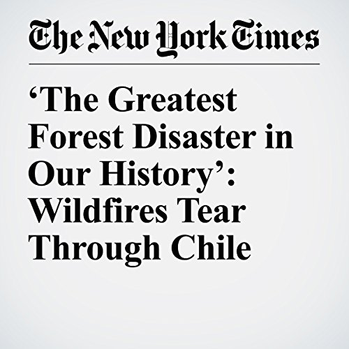 'The Greatest Forest Disaster in Our History': Wildfires Tear Through Chile audiobook cover art