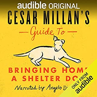 Cesar Millan's Guide to Bringing Home a Shelter Dog                   By:                                                                                                                                 Cesar Millan                               Narrated by:                                                                                                                                 Angelo Di Loreto                      Length: 1 hr and 9 mins     347 ratings     Overall 4.6