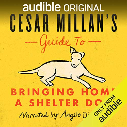 『Cesar Millan's Guide to Bringing Home a Shelter Dog』のカバーアート