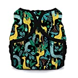 Thirsties Duo Wrap Cloth Diaper Cover, Snap Closure, Stand Tall Size Two (18-40 lbs)
