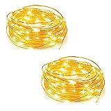 Cadena de Luces para Interiores y Exteriores 4 Metros, 40 LEDs Luces Micro de Hadas a Pilas de Alambre de Cobre Cuerdas...