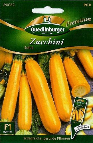 Zucchini, Soleil F1