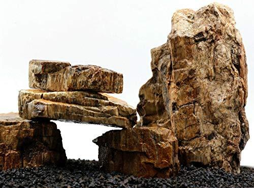 TM Aquatix Aquarium Steen Fossilazed Hout IWAGUMI STYLE SET VAN STONEN AQUASCAPING NATUURLIJKE, 5g (40cm long set)