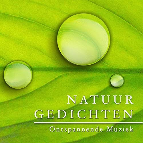 Meditative Music Guru & Sleep Music System