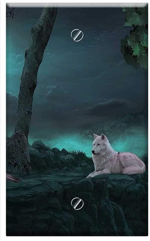 Single Gang Blank Wall Plate Cover Fantasy Wolf Moon Baby Dragon Dragon Animal