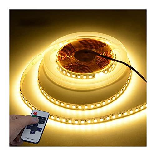 SPFSYF Luz de Tira LED de 5m 4040 LED 110 V Conecte de la UE / 220V Enchufe de la UE a DC 12V 120LED / M Lámpara de neón Flexible con Control Remoto de RF para Navidad en casa