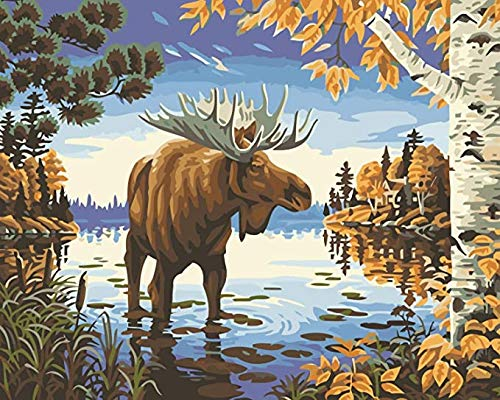 DIY Paint by Numbers, Canvas Oil Painting Kit for Kids & Adults, 16'W x 20' L Drawing Paintwork with Paintbrushes, Acrylic Pigment (Majestic Moose)