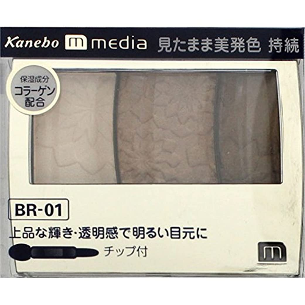 著作権恥ずかしさ三番【カネボウ】 メディア グラデカラーアイシャドウ BR-01