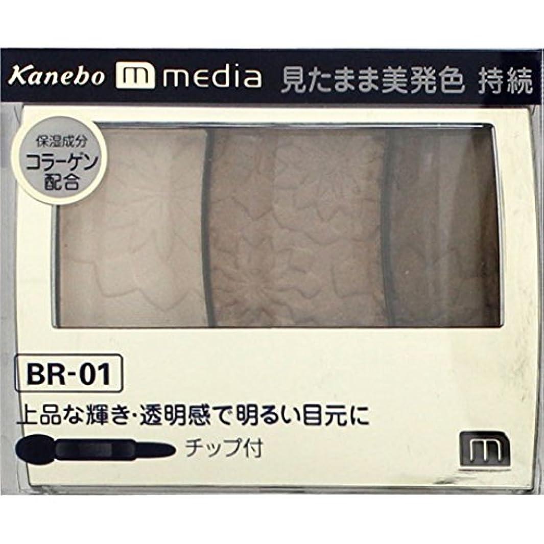静的ミトン非行【カネボウ】 メディア グラデカラーアイシャドウ BR-01