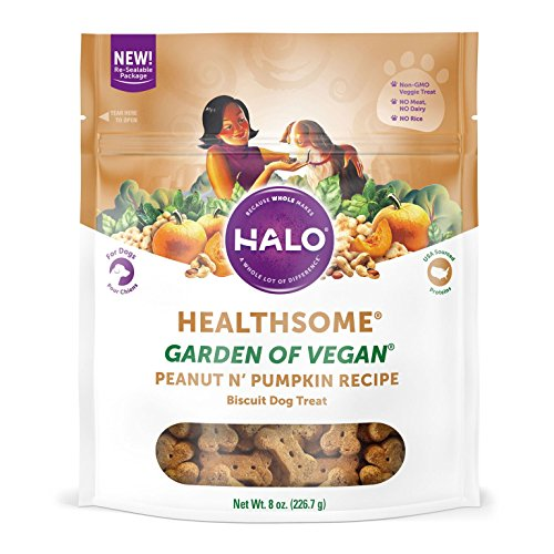 Halo Vegan Grain Free Natural Crunchy Dog Treats, Garden of Vegan Peanut N' Pumpkin Recipe, 8-Ounce Bag