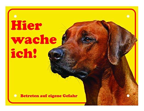 LUGUNO Schild Hund Rhodesian Ridgeback Warnung Vorsicht Hundeschilder Alu (20x15cm) mit 4 Eckbohrungen