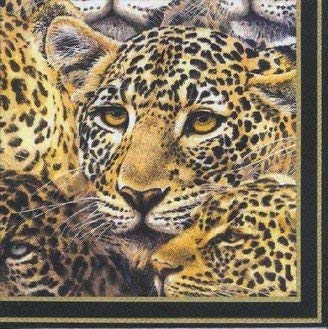 Ihr , Fazzoletti di Carta, Disegno Leopardato/Modello di Ghepardato, Lussuoso, Tradizionale, in Gran Bretagna, 20 Pezzi