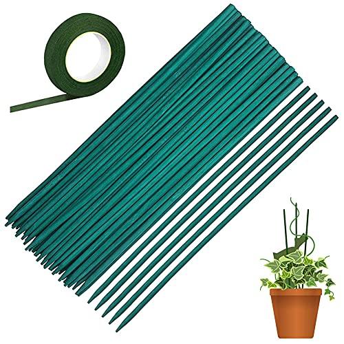 50 Varillas Tutores para Plantas Trepadoras Verde Palo de la Planta 38 cm Soporte de la Planta Floral Estaca de Bambú de Madera con 30...