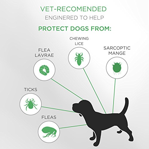 Product Image 7: SOBAKEN Flea and Tick Prevention for Dogs, Natural and Hypoallergenic Flea and Tick Collar for Dogs, One Size Fits All, 25 inch, 8 Month Protection, Charity