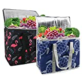 Cooler Grocery Bags Insulated Zipper XLarge frozen food reusable shopping bags Collapsible Thermal Grocery Tote Bags Heavy Duty Food Delivery Bags Durable 2 Pack