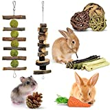 ERKOON Bunny Chew Toys, Small Animal Hamster Chew Toys, Natural Apple Wood Sticks Pet Chew Toy for Rabbits, Chinchillas, Guinea Pigs for Teeth