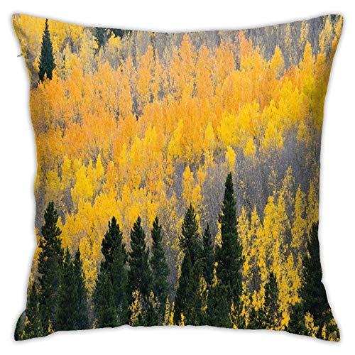SHUJIA Funda de cojín para cojín, diseño de Aspen Forest en Colorado Rocky Mountains Western Wildern USA Theme, 45,7 x 45,7 cm