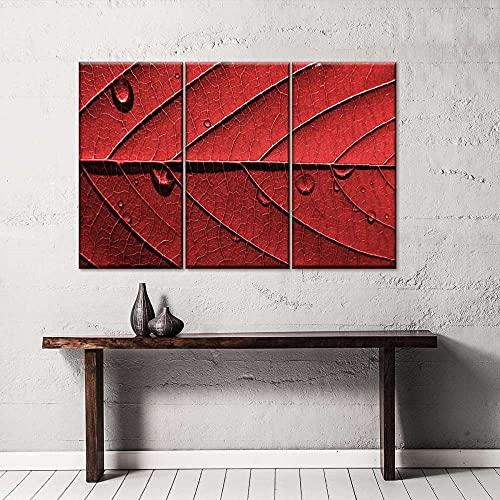 AWER 3 piezas de lienzo de arte de pared,Panel múltiple de hoja de rocío,Cuadro geométrico Abstracto,HD Imagen Impresiones En Lienzo,decoración de Dormitorio,en un Marco