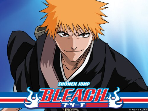 Bleach Anime Series