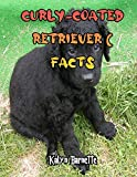 CURLY-COATED RETRIEVER FACTS: CURLY-COATED RETRIEVER fact for girl age 1-10 CURLY-COATED RETRIEVER fact for boy age 1-10 facts about all about CURLY-COATED RETRIEVER