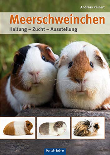 Meerschweinchen: Haltung - Zucht - Ausstellung
