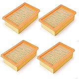 Doremi Set di filtri per aspirapolvere multiuso Kärcher MV4 MV5 MV6 WD4 WD5 WD6, alternativa ai pezzi Kärcher 28630050, filtro a pieghe piatte