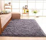 CNFQ Shaggy alfombras de Pelo Largo alfombras Salon alfombras de habitacion moquetas Sala de Estar (Gris, 100 x 200 cm)
