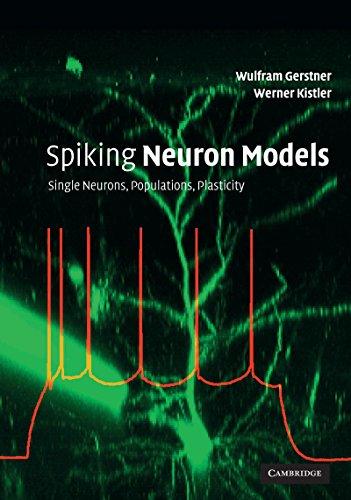 Spiking Neuron Models: Single Neurons, Populations, Plasticity (English Edition)