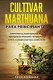 Cultivar marihuana para principiantes: Comprender el poder curativo de la marihuana en interiores y exteriores y cómo el cannabis afecta el sueño lúcido.