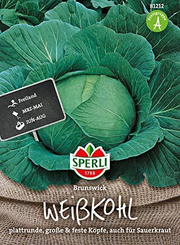 81212 Sperli Premium Weißkohl Samen Brunswijker | Mild und sehr Fein im Geschmack | Lagerfähig | Weißkohl Saatgut | Kohl Samen | Sauerkraut Samen