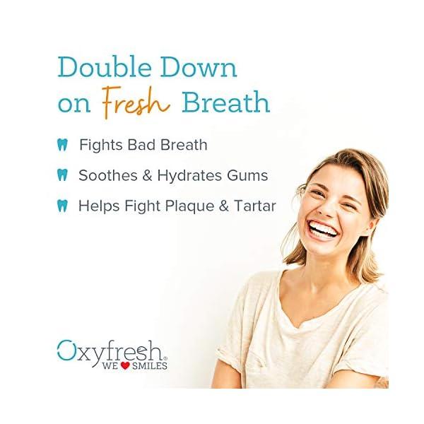 Oxyfresh Fresh Breath Mouthwash