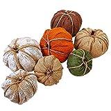 Winlyn 7Pcs Assorted Burlap Pumpkins for Fall Harvest Festival Thanksgiving Autumn Ornaments