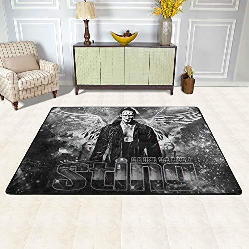 W_We Elimination1 Area Rug for Living Room Bedroom Floor Mat Doormats Carpet for Home Decor, 36 X 24 in & 72 X 48 in