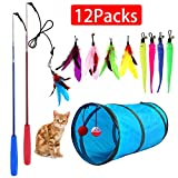 M JJYPET Retractable Cat Toy Wand,12 Packs Interactive Cat Feather Toys,9 Assorted Teaser Refills with Bell for Cat,Kitten