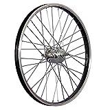 Taylor-Wheels 20 Pouces Roue arrière vélo rétropédalage 406-19 Noir/Argent