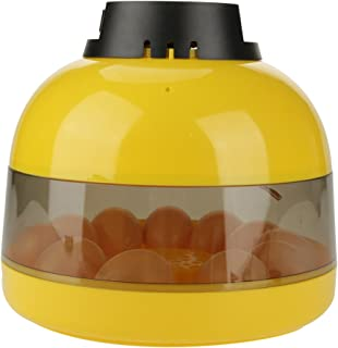 GOTOTOP 10 Huevos de Gallina Mini Incubadora Digital LED Aves de Corral Temperatura del Ventilador