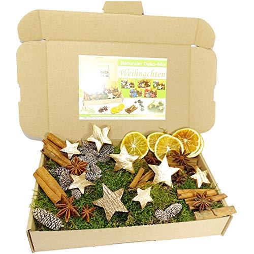 MGS SHOP Deko - Mix Weihnachten Bastelset kreative Idee Natur Dekoration mit Moos Anis Zimt Orangenscheibe Kokosstern (Gold)