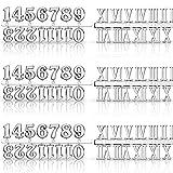 Kit de Números de Reloj Incluyendo Número Árabe y Número Romano en Oro Negro Plata Números de Reloj Digital DIY para Reemplazo Reparación de Accesorios de Reloj (Plata, 6 Piezas )