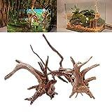 Caxmtu - Tronco de madera de deriva natural para acuario, 1 unidad