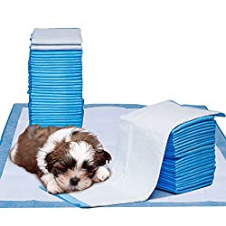 Potty Pads for Dogs