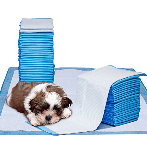 what are the best potty pads for dogs